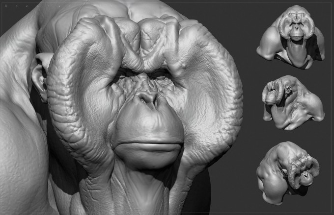 Ben_Mauro_FZD_Primate_01