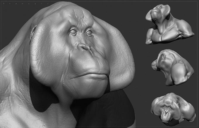 Ben_Mauro_FZD_Primate_08
