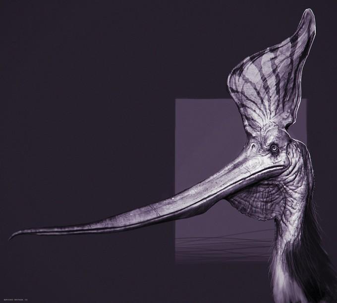 Bryan_Wynia_Art_Pteranodon-Sternbergi_Study