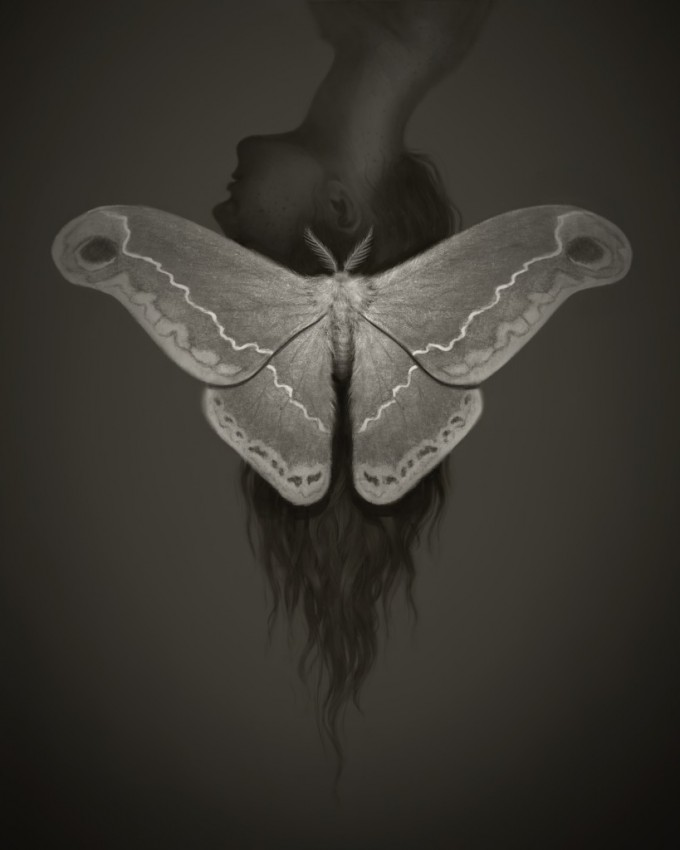 Miranda_Meeks_Art_Illustration_Moth