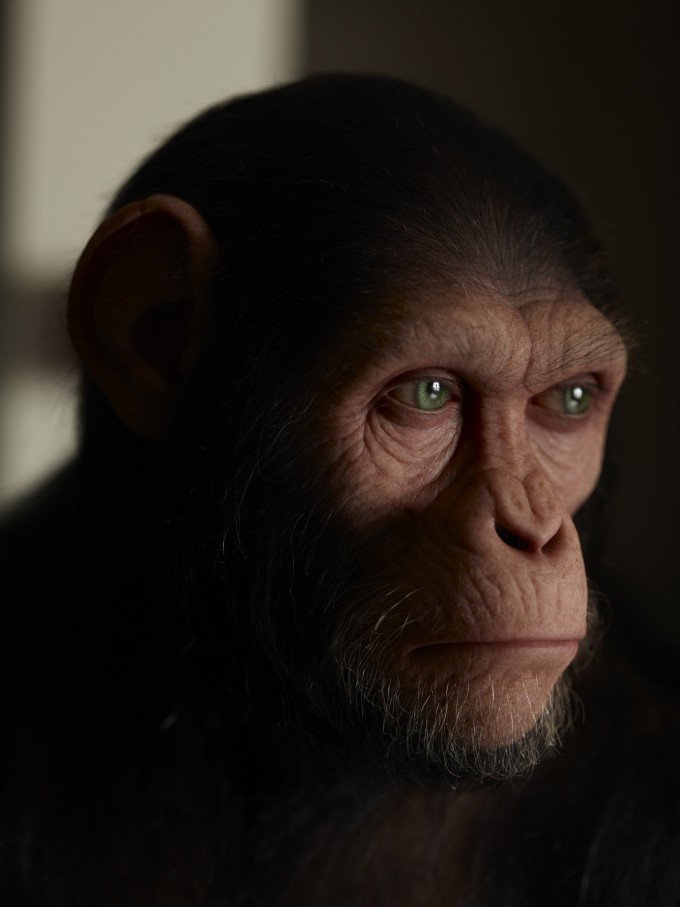 Rise_of_the_Planet_of_the_Apes_Concept_APEheadApehead-309