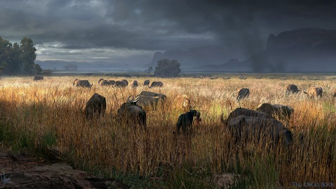 The_Jungle_Book_Concept_Art_JB12_Ravine_MowgliBagheera_WalkIntoGrassland_Paintover_v03