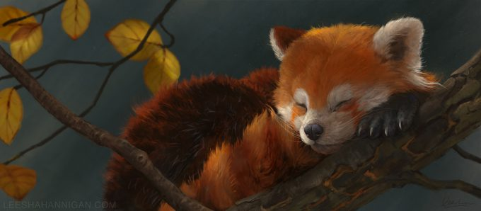Leesha-Hannigan-Art-Red-Panda