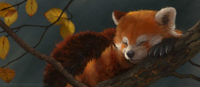 Leesha-Hannigan-Art-Red-Panda