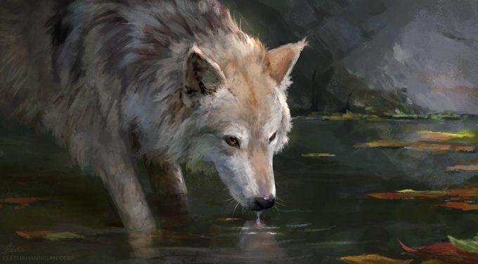 Leesha-Hannigan-Art-Wolf-Drinking