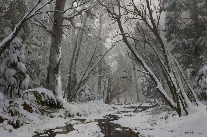 The_Last_of_Us_Concept_Art_Snow_Forest_AL-01