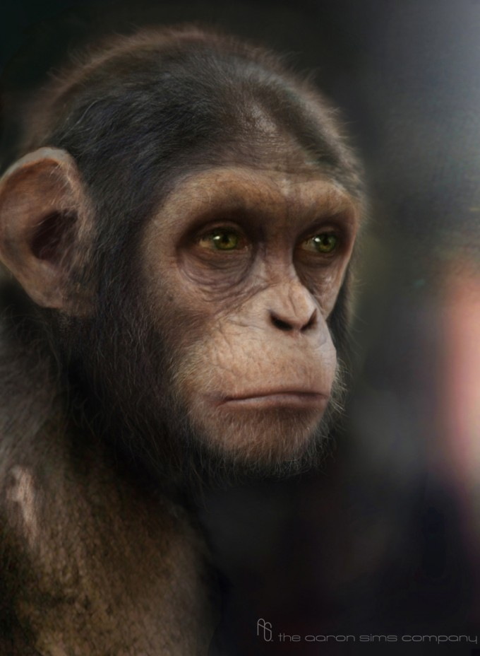 Rise_of_the_Planet_of_the_Apes_Concept_Caesar-Stage-2-3