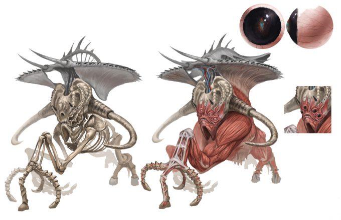 bobby-rebholz-creature-design-gargonthis-anatomy-01
