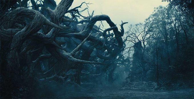 Igor Staritsin 3 Maleficent DMP
